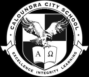 CCS Grey Logo